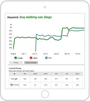 seo service graph