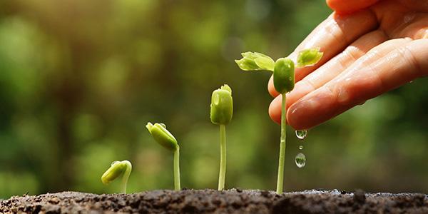 b2b lead nurturing thumbnail