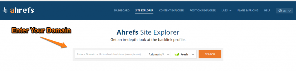 Backlink Report 1